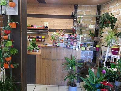 intérieur de la boutique Jardin de Florette